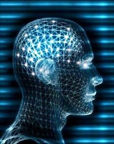 Dvojezični mozak bolje funkcioniše